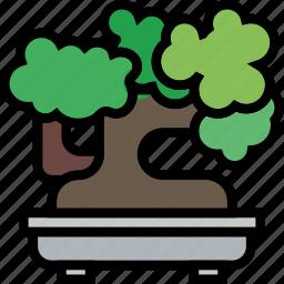 belongings, bonsai, furniture, households icon