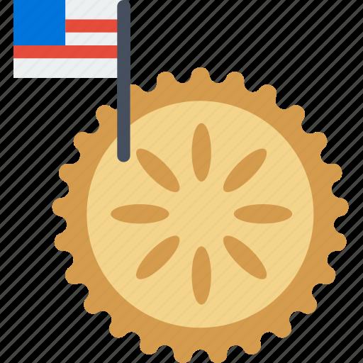 american, cinema, film, movie, pie, teen icon