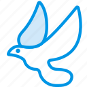 belief, bird, dove, peace, religion, worship icon
