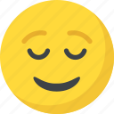 emoji, emoticon, happy, smiley, smiling face icon