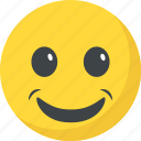 emoticon, grinning face, happy face, joyful, smiley icon