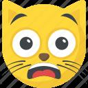 awestruck cat, cat emoji, cat facial expressions, emoticon, smiley icon
