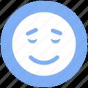 emotion, emoticons, face smiley, smiley, sad, worried, expression