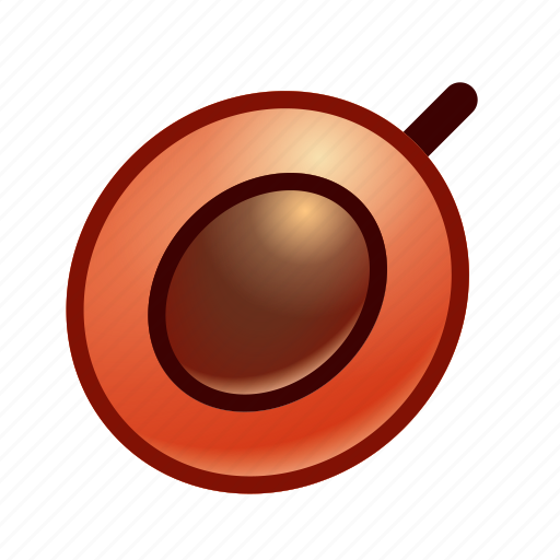 Apricot, fruit, peach, plum icon - Download on Iconfinder