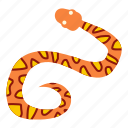 animal, danger, nature, orange, serpent, snake, wildlife icon
