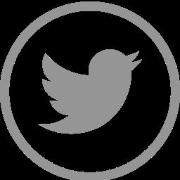 circle, logo, media, social, social media, twitter icon