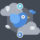broadcast, follower, media, networking, social, twitter icon
