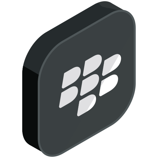 blackberry, communication, internet, media, network, online, social icon