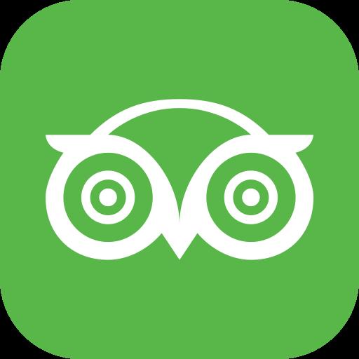Media, social, trip, tripadvisor icon - Free download