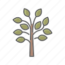 ecology, environment, nature, plant, tree icon