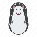 animal, hedgehog, standing, zoo icon