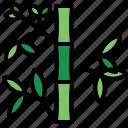 bamboo, botanical, garden, japan, nature, plant icon