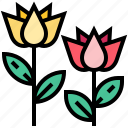 flower, lotus, spa, tulip icon