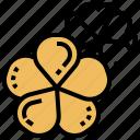 beautiful, flower, nature, plant, plumeria icon