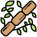 asia, bamboo, leaves, nature, plant icon