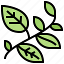 herb, leaves, nature, plant, vines icon