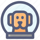 astronaut, dog, helmet, space, spacesuit