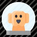 astronaut, dog, helmet, space, spacesuit icon