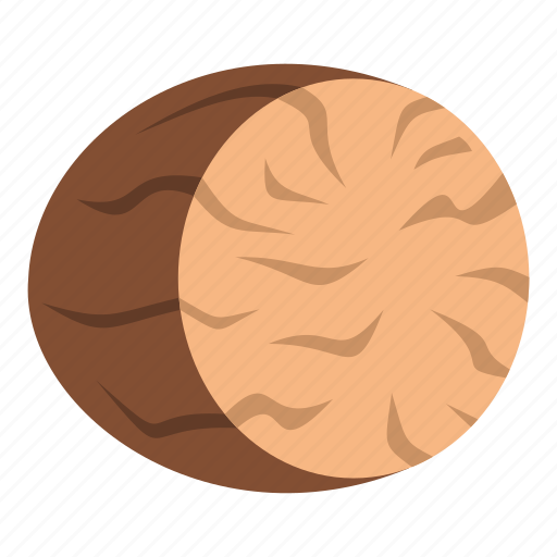 brown, flavor, food, ingredient, nutmeg, spice, whole icon