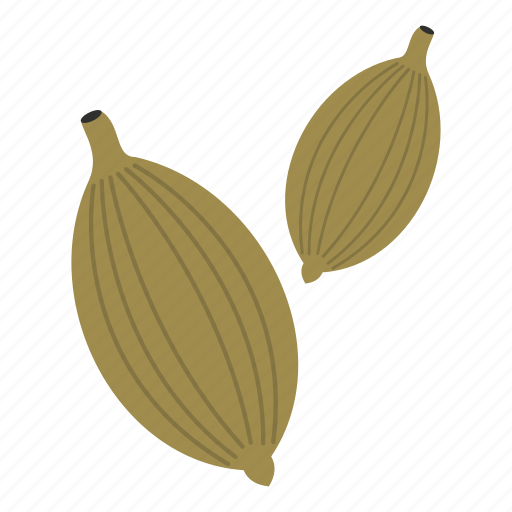 aromatic, cardamom, food, herb, ingredient, seed, spice icon