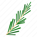food, herb, ingredient, plant, rosemary, spice, thyme icon