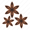 anise, baden, brown, fragrant, seed, spice, star icon