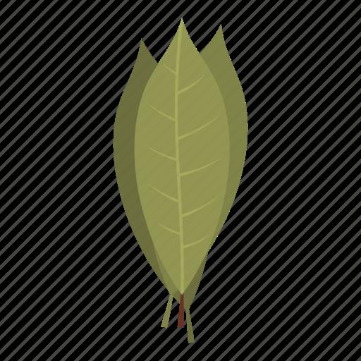 food, herb, ingredient, laurel, leaf, plant, spice icon
