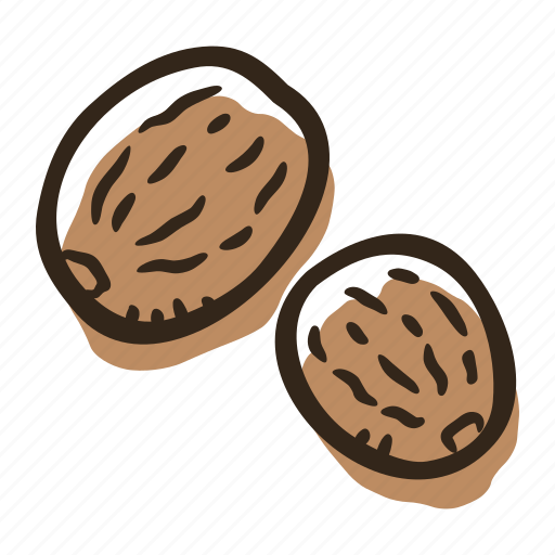 cook, food, herb, ingredient, nutmeg, plant, spice icon