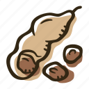 cook, food, herb, ingredient, plant, spice, tamarind icon