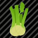 cartoon, fennel, flavoring, food, green, healthy, vegetable icon