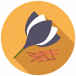 condiment, food, herb, ingredients, saffron, seasoning, spices icon