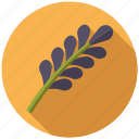 condiment, food, herb, ingredients, lavender, seasoning, spices icon