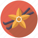 condiment, flower, food, ingredients, pod, spices, vanilla icon
