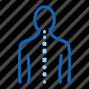 backbone, chiropractor, orthopedics, osteopath, spine icon