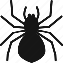 bug, halloween, insect, spider icon