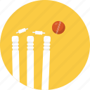 bails, bowled, cricket, outdoor sports, wicket and ball icon