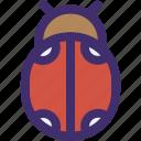 animal, animals, bug, cute, fly, insect, ladybug