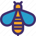 animal, bee, beetle, ecology, honey, insect, nature icon