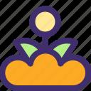 bloom, ecology, flower, leaf, nature, plant, spring icon