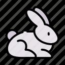 animal, easter, rabbit, spring icon