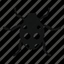 beetle, bug, fly, insect, ladybird, ladybug, nature icon