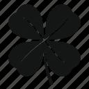 clover, four, irish, leaf, luck, plant, white