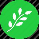 branch, easter, ecology, green, leaf, nature, spring
