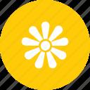 bloom, blossom, chamomile, easter, floral, flower, spring icon