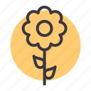 blossom, ecology, flower, nature, spring, sunflower icon