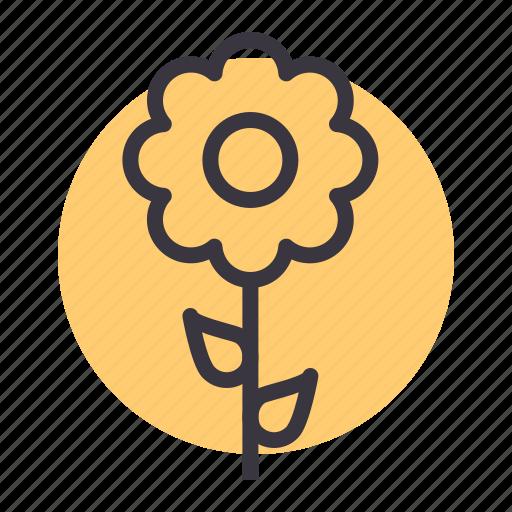 blossom, ecology, flower, nature, spring, sunflower icon
