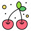 cherry, food, fruit, organic, vegan