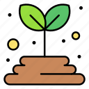 grow, land, leaves, nature, plant, seeds