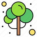 green, nature, spring, tree, wood