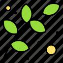 branch, nature, ecology, green, leaf